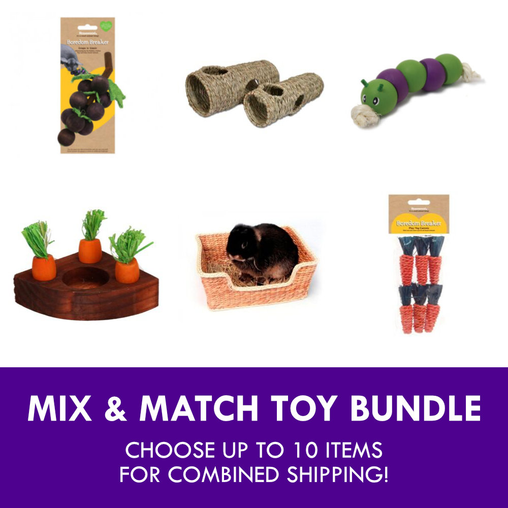 rabbit and guinea pig toy bundle